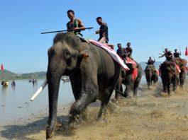 lễ hội đua voi ở bản đôn