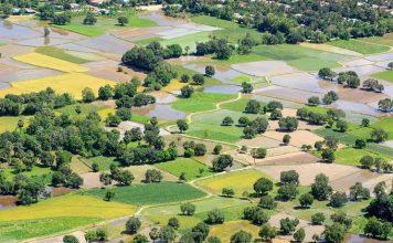 Từ đỉnh Tà Pạ đưa mắt nhìn về cánh đồng Tri Tôn