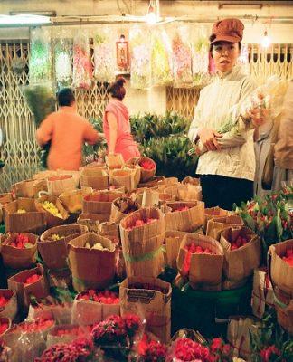 Vẻ đẹp chợ hoa Hồ Thị Kỷ