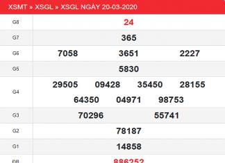 XSGL-20-3_2-min